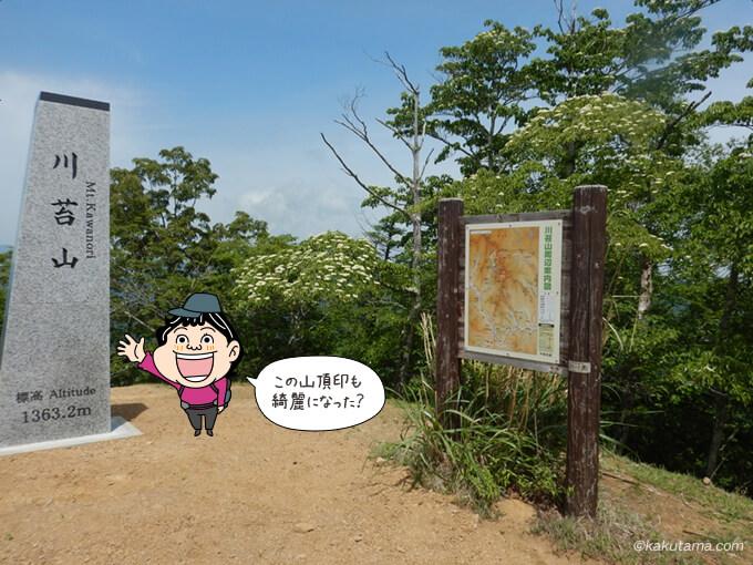 川苔山山頂の写真