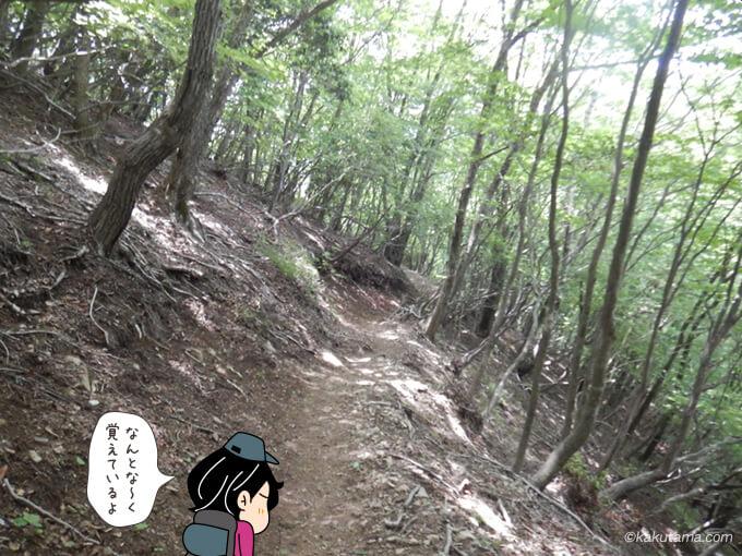 鳩ノ巣駅方面への下山1