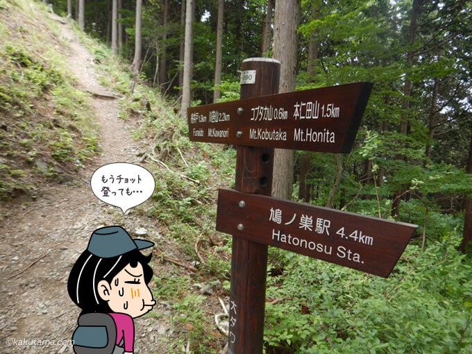 鳩ノ巣駅に下るか本仁田山へ行くか悩む