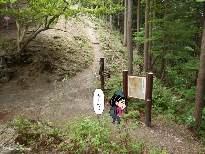 鳩ノ巣駅に下るか本仁田山へ行くか悩む2