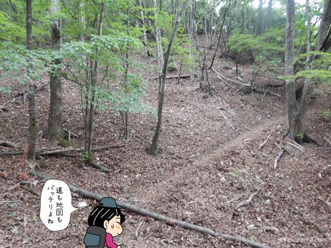本仁田山へ向かって歩き出す