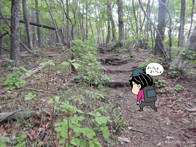 本仁田山へ向かって歩き出す1