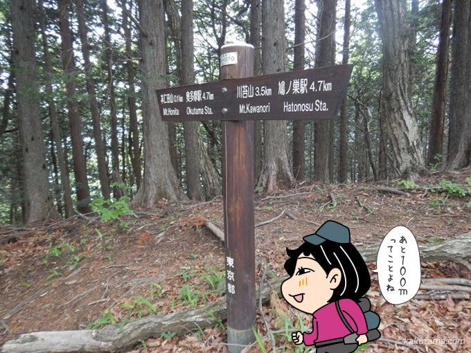本仁田山まであともうチョット