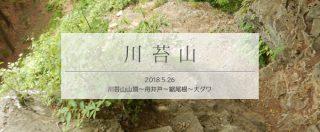 川苔山での道迷い経験を単独周回登山でリベンジ!(中編)