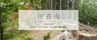 川苔山での道迷い経験を単独周回登山でリベンジ!(後編)