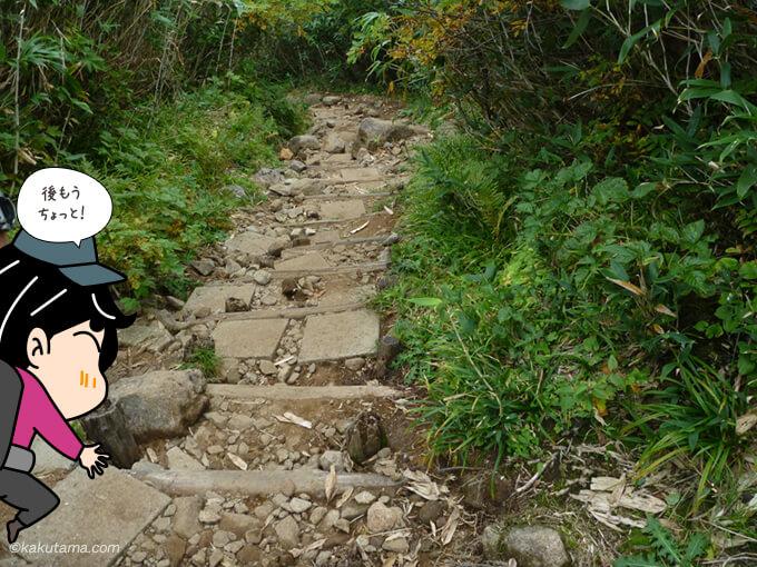 栂池自然公園へ向かって下山2
