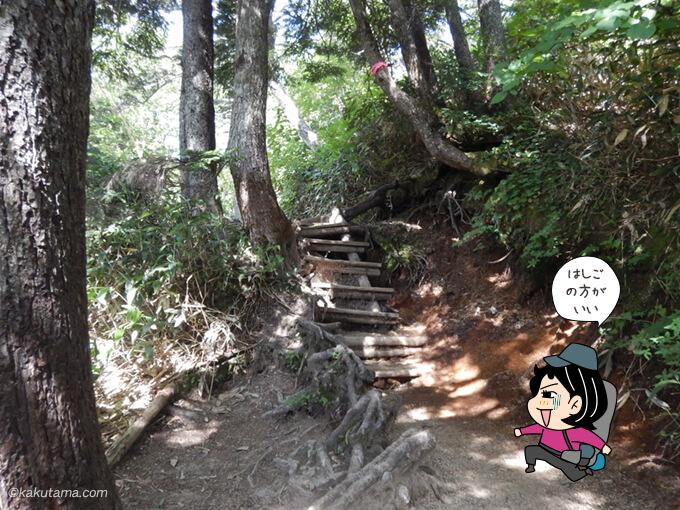 富士見ベンチ以降も急登が続く