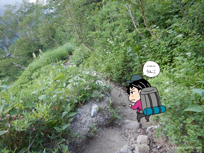登山道にうんこ