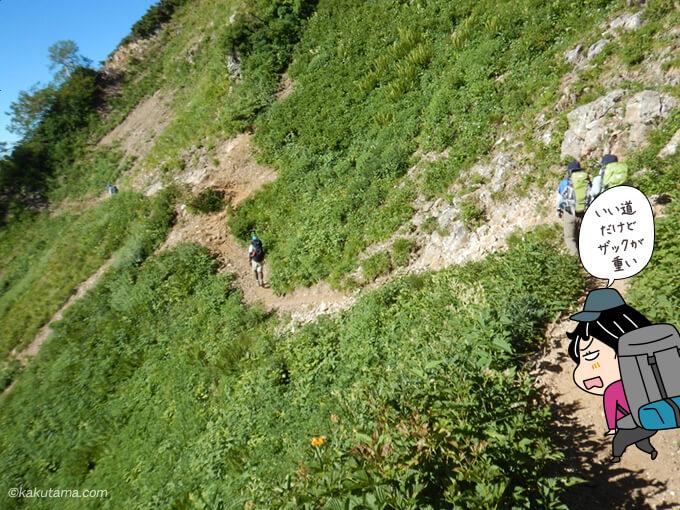 緑あふれる登山道