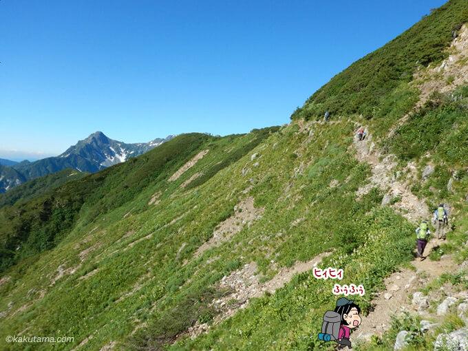 緑あふれる登山道2