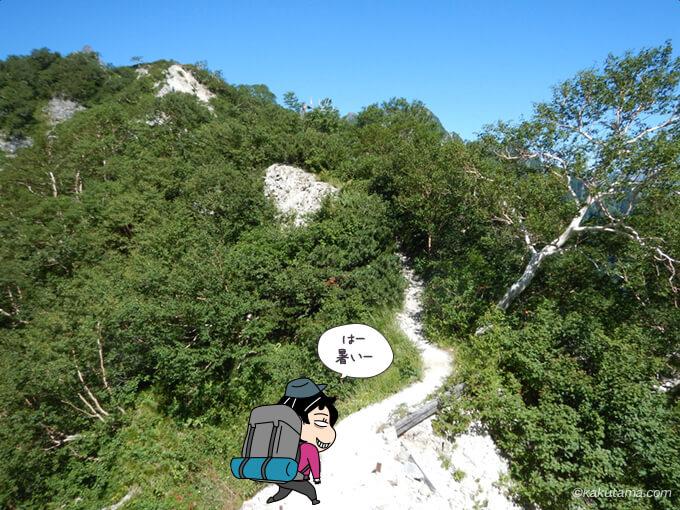 日のてる登山道