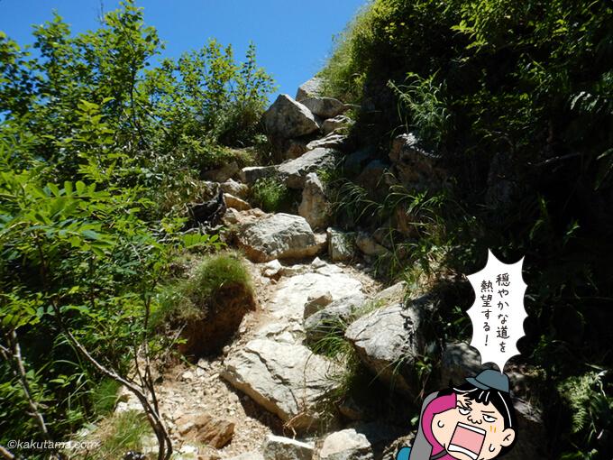 更に現れる岩場