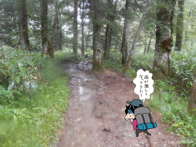 雨でびしょびしょの道