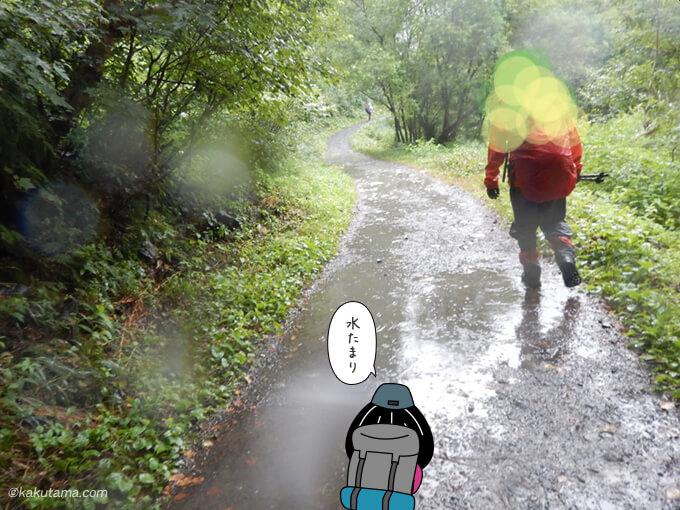 さらに雨が激しい林道