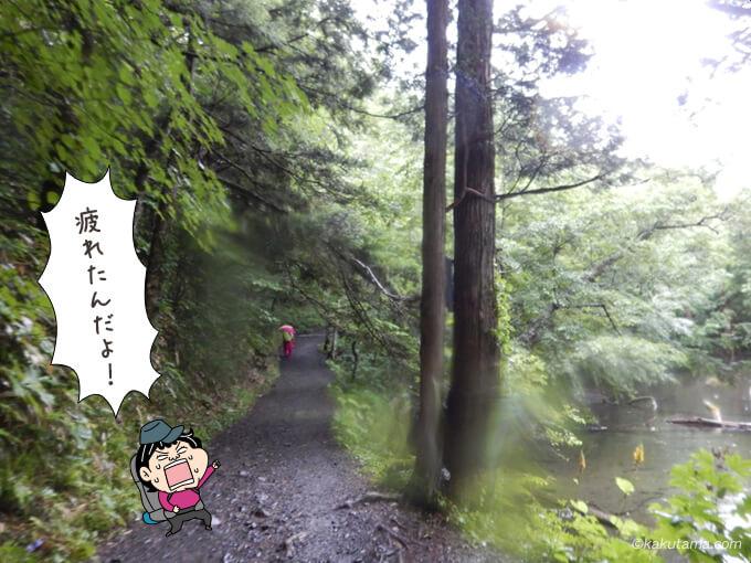 林道歩きに疲れて来た