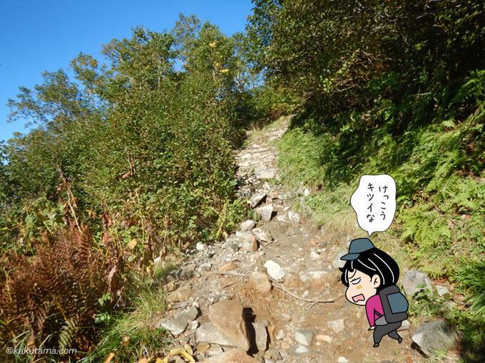 富士見坂の看板以降が辛い1