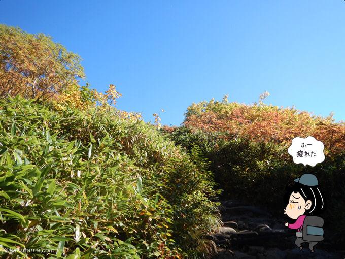 富士見坂の看板以降が辛い3