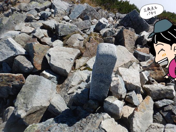 爺ヶ岳南峰山頂の三角点