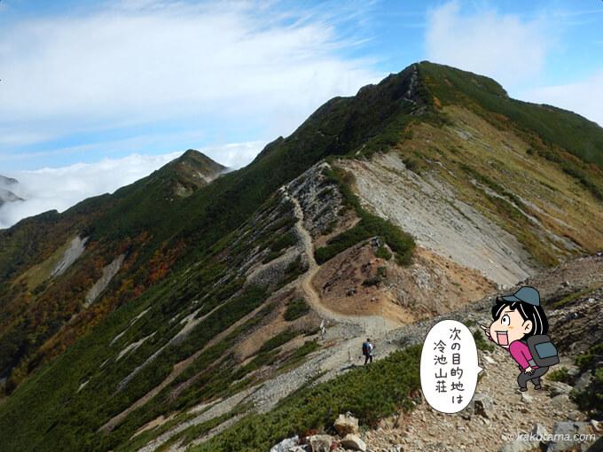 爺ヶ岳南峰から下る