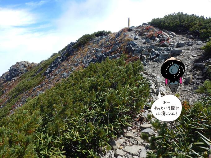 爺ヶ岳中峰山頂が見える
