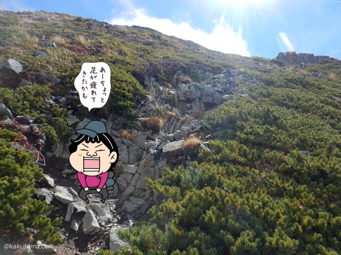 爺ヶ岳中峰から下る2