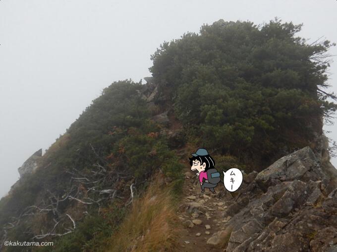 真っ白な岩場歩きが続く2