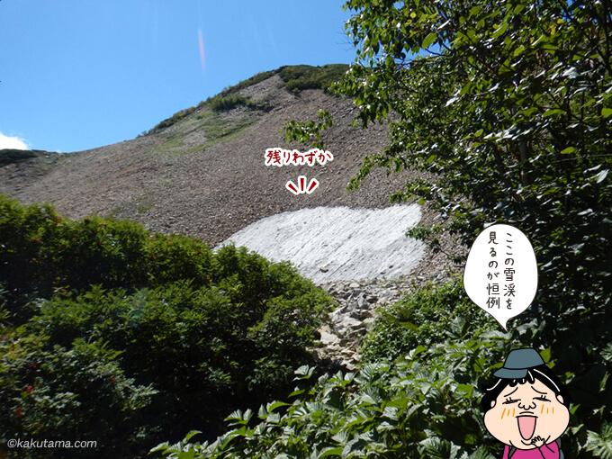 定番の雪渓