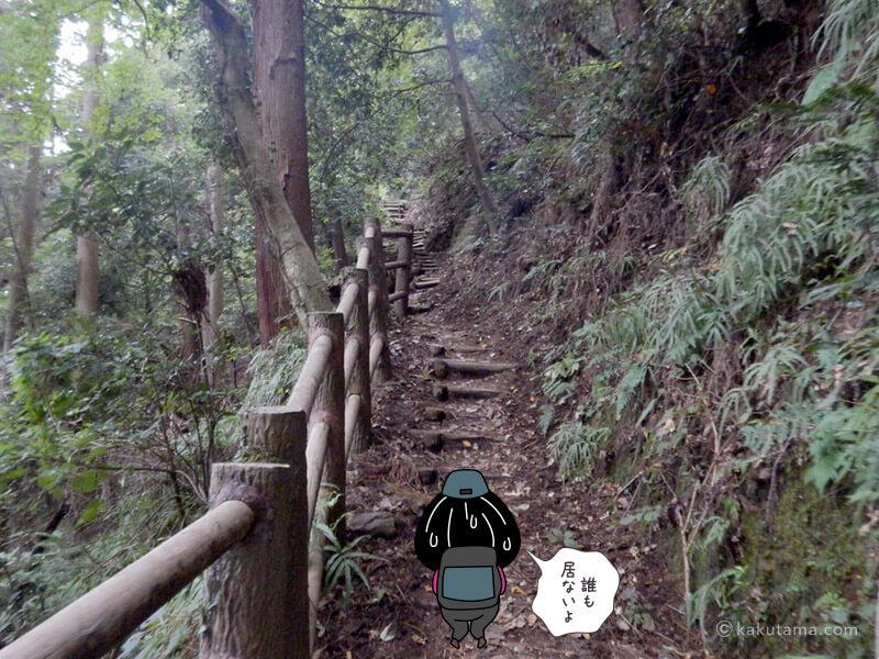 階段もある山道