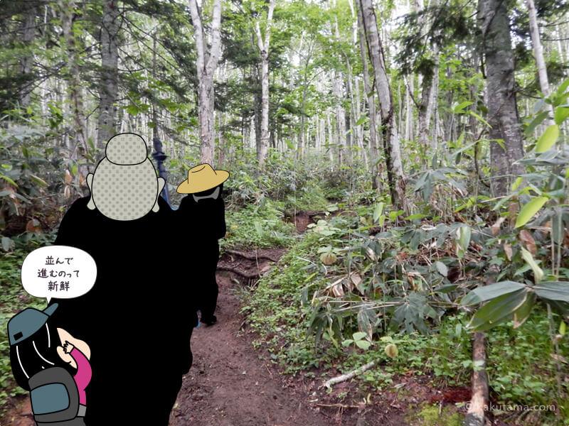 ひたすら樹林帯を歩く