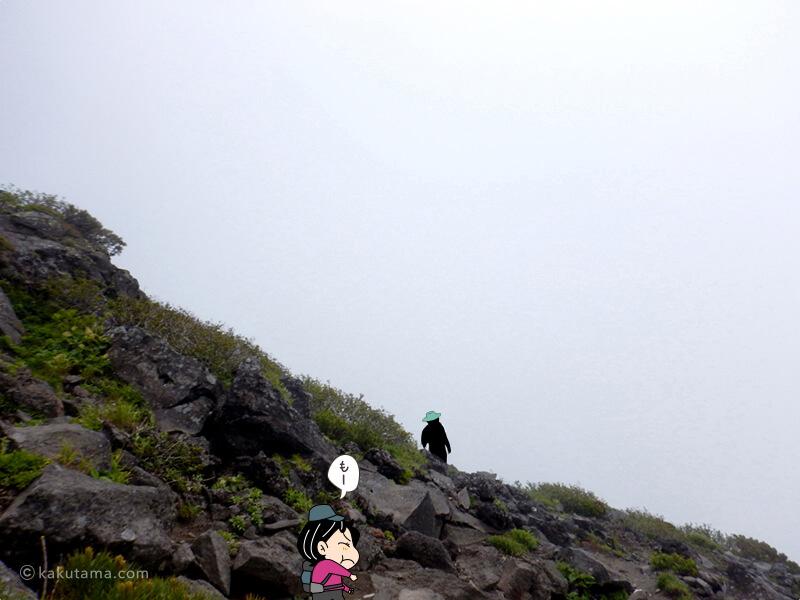 真っ白な山頂付近