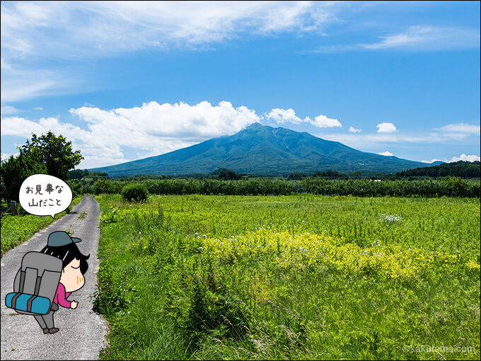 野原から山を見る
