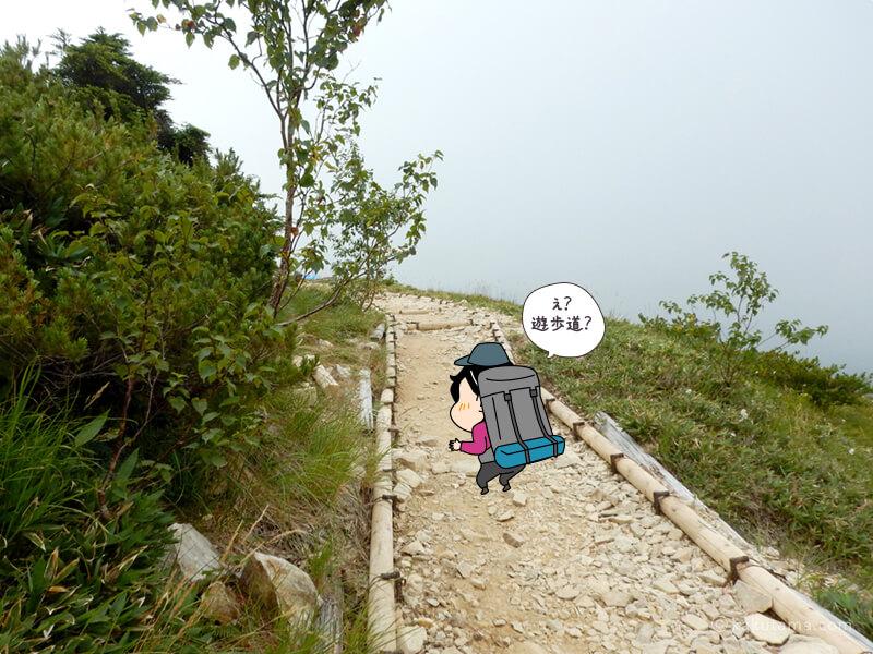 遊歩道なみの登山道