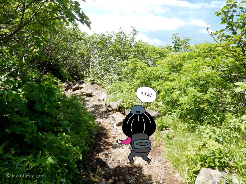 羊蹄山倶知安コースを下る2