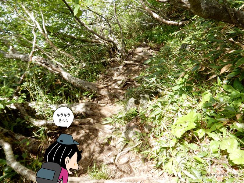 羊蹄山倶知安コース八合目を通過2