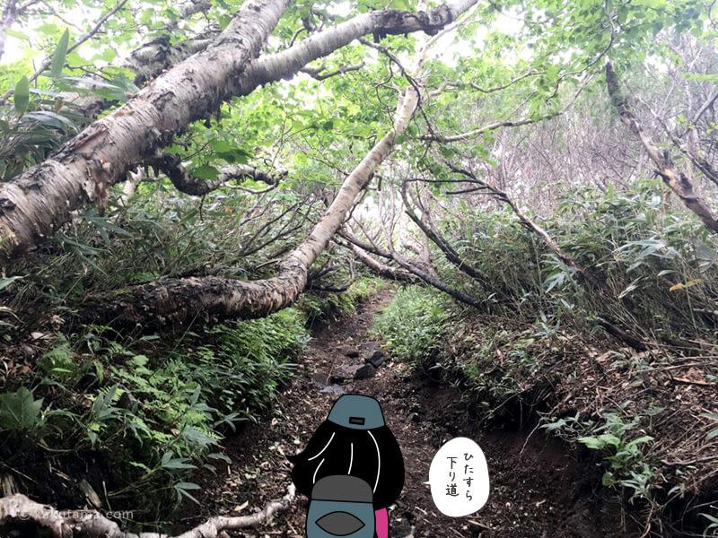 羊蹄山倶知安コース六合目を通過