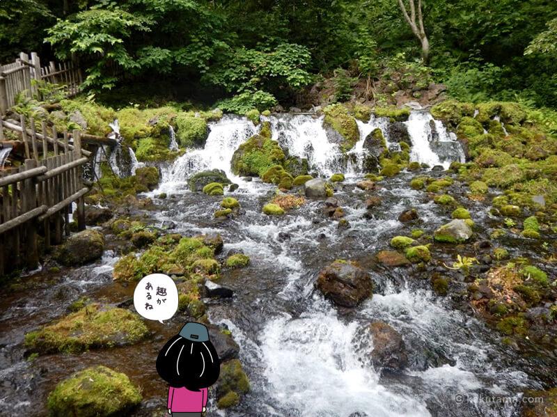京極の水の吹出口