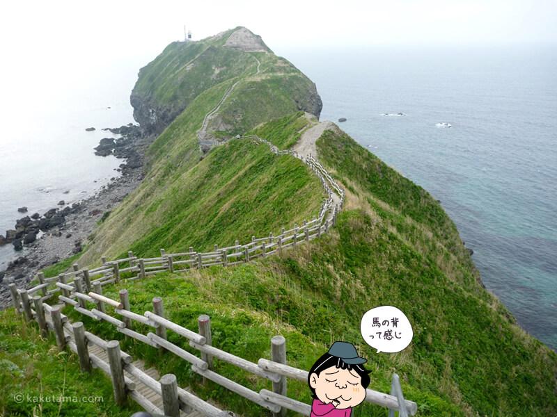 神威岬・チャレンカの小道は馬の背みたい