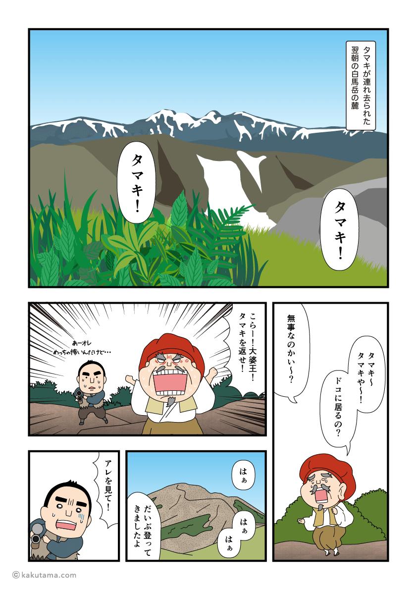 白馬岳に咲くオオサクラソウが赤くなった訳のマンガ2
