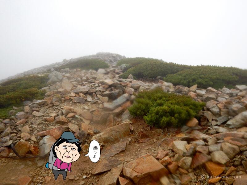 薬師岳へ向かって登る3