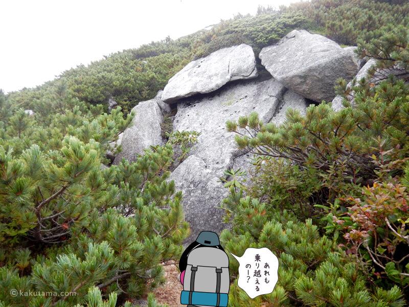 乗り越えられなさそうな岩場