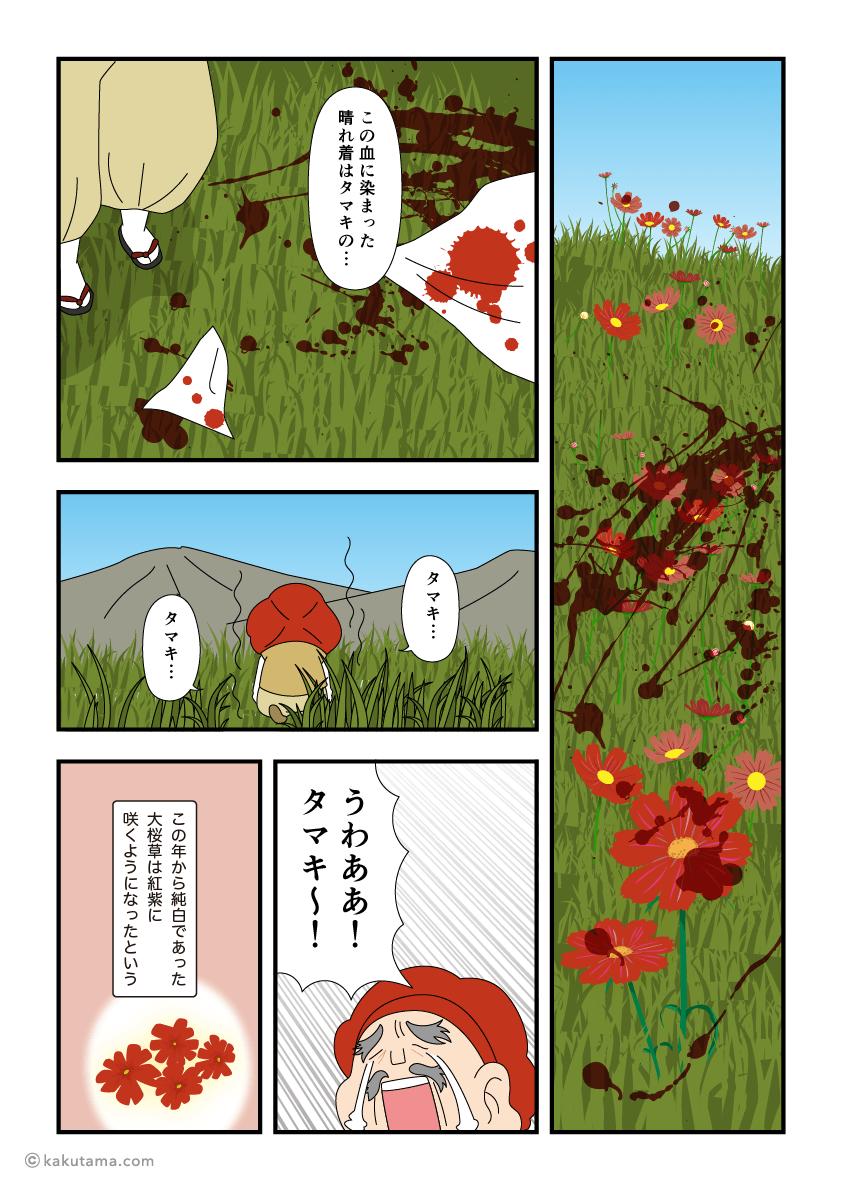 白馬岳に咲くオオサクラソウが赤くなった訳のマンガ3