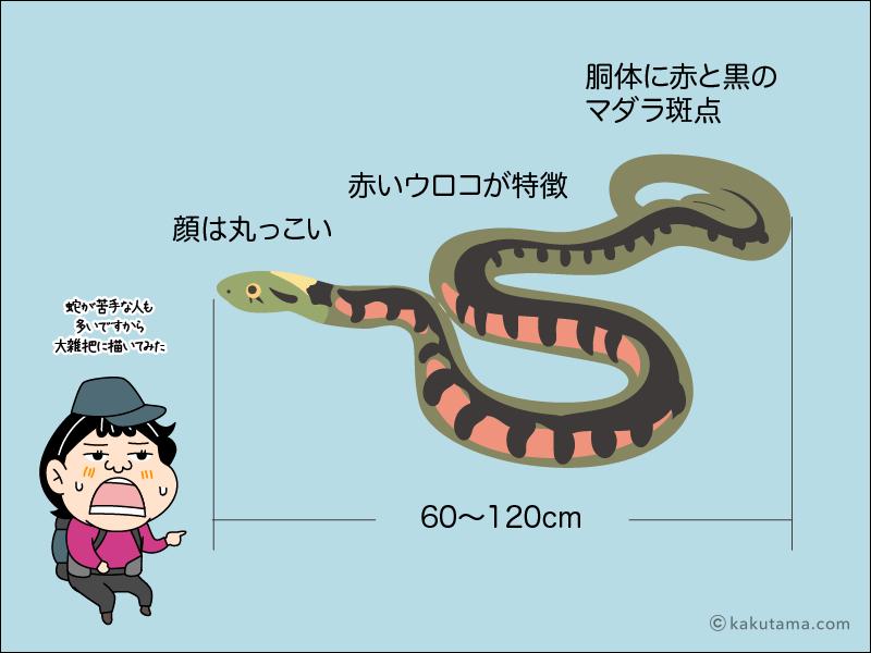 登山用語ヤマガカシ