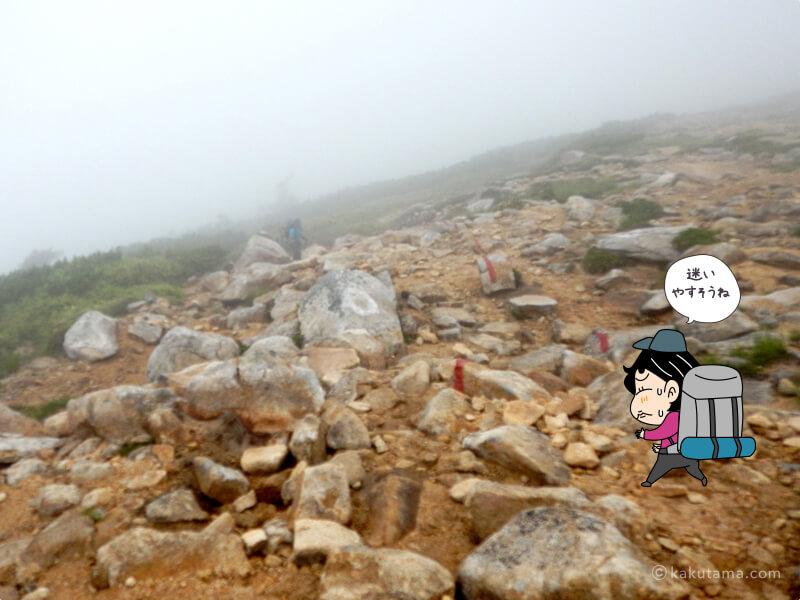 越中沢岳からすぐに下り