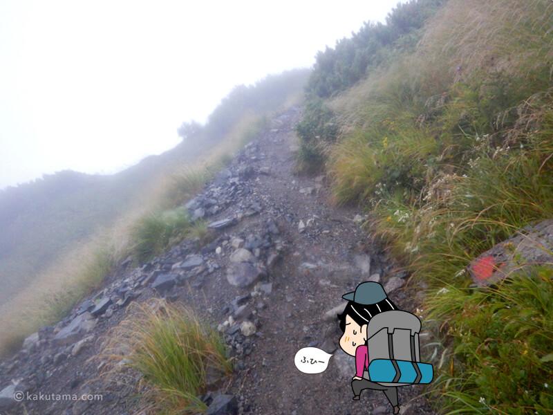 獅子ヶ岳へひたすら登り