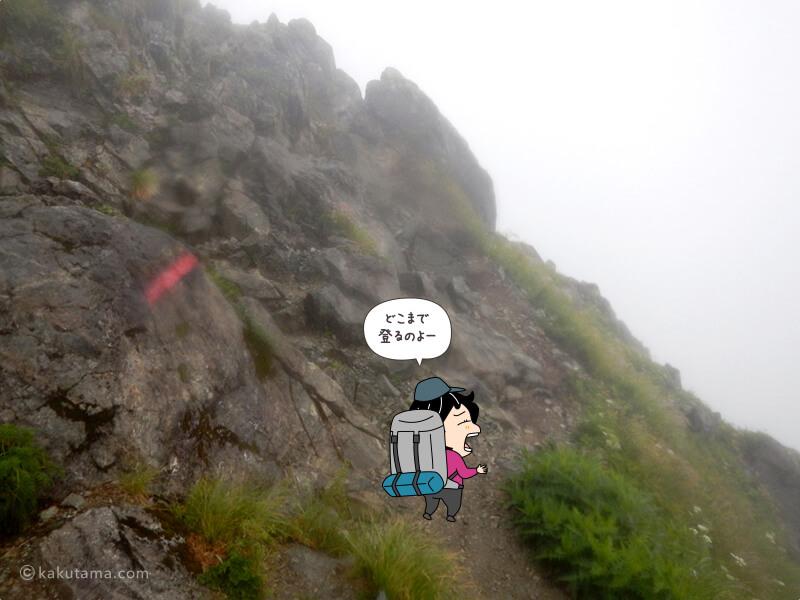 ひたすら登る