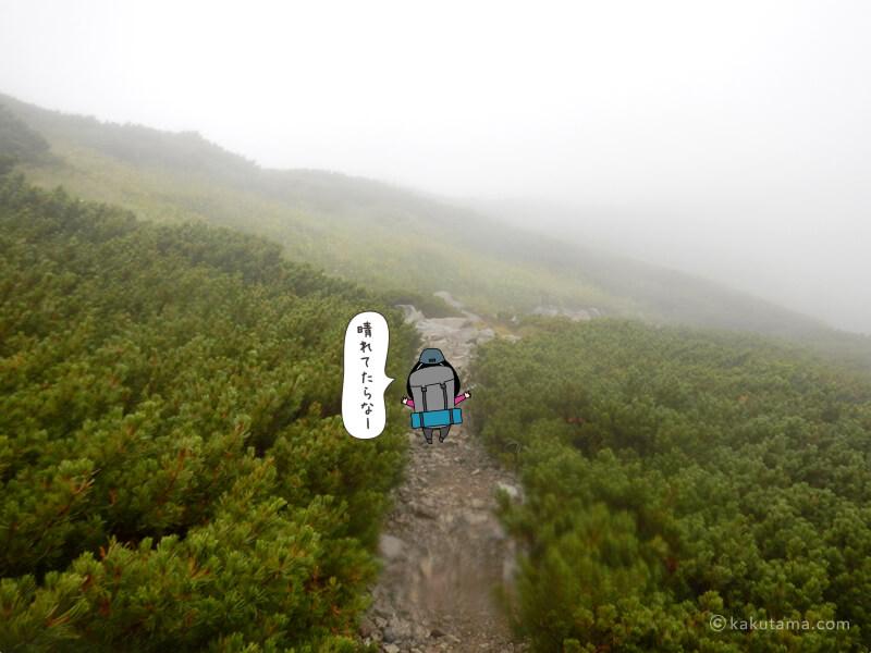 獅子ヶ岳山頂から先へ進む3