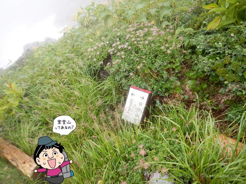 室堂山と室堂ターミナルへの標識