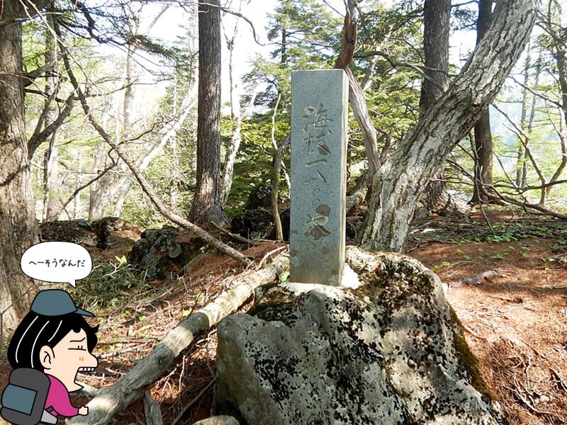 海抜1800m地点の看板