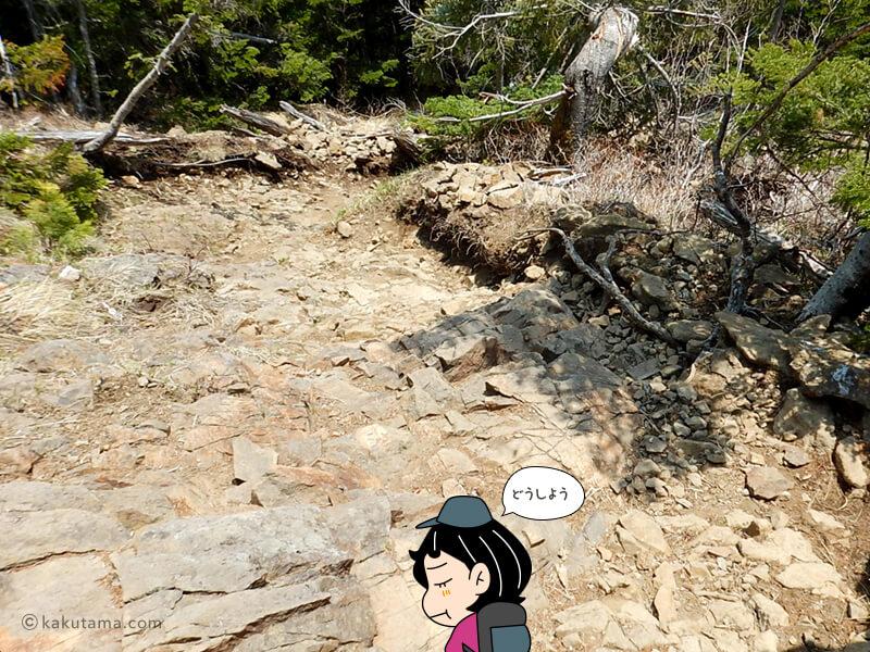 編笠山を登ろうか悩む