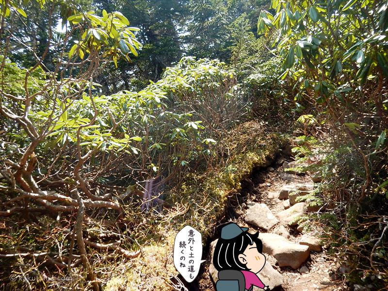 編笠山の登り2